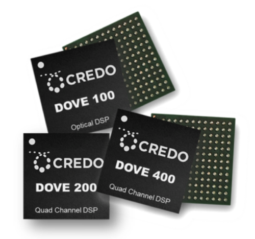 dove_chips